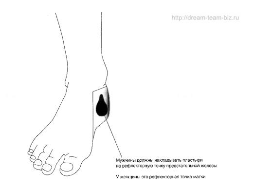 pl-detox-prostata