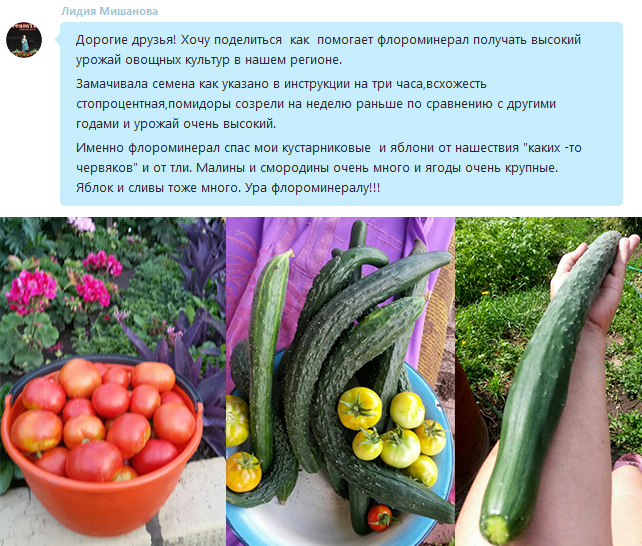 отзывы-продукция-урожай
