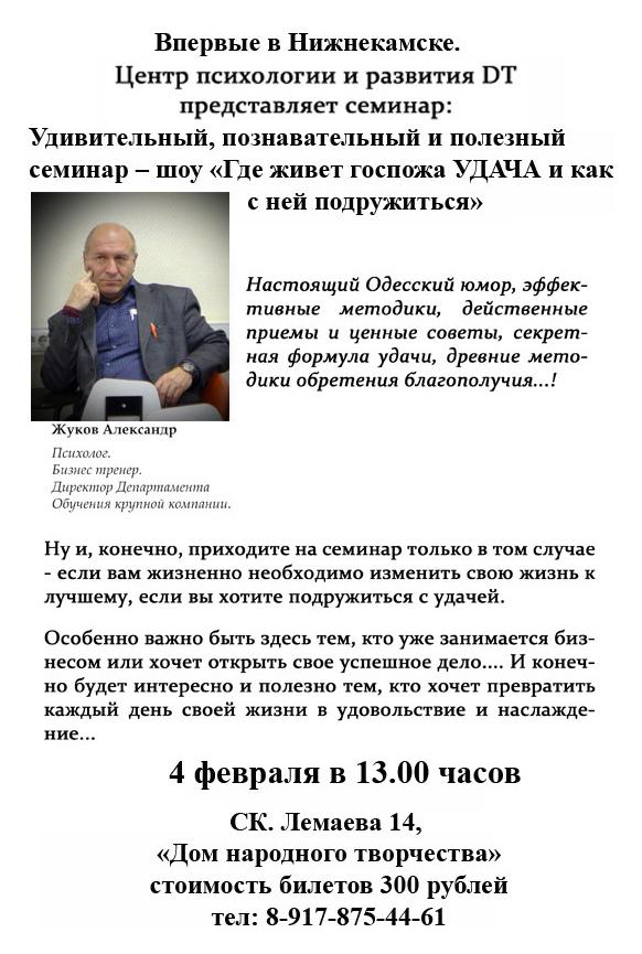 ЖуковА-Нижнекамск-040217